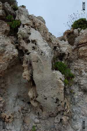 geology fault line malta il-fawwara dingli cliffs