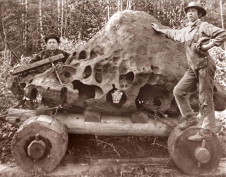 Willamette Meteorite - Wikipedia