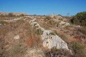 fulgur thunderbolt fulgurites mineraloid limestone heritage park malta mdina