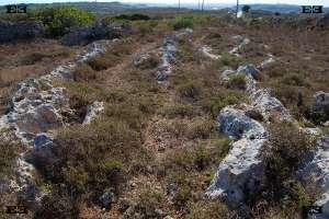 giant fulgurites rock lines malta experiences natural limestone heritage park