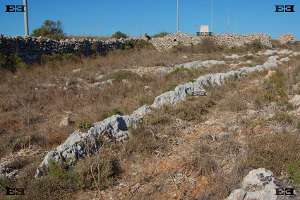massive fulgurites discharges europe  malta experience tour limestone heritage park