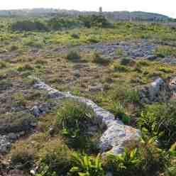 Amazing Malta rock line photographed near Pembroke Barracks on the Island of Malta