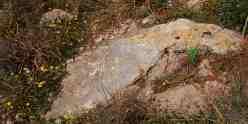 Erosion triangle? photographed near Saint Andrews, Pembroke, Malta